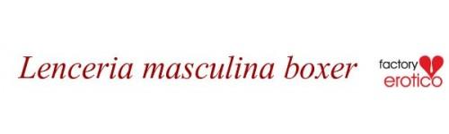 LENCERIA MASCULINA BOXER